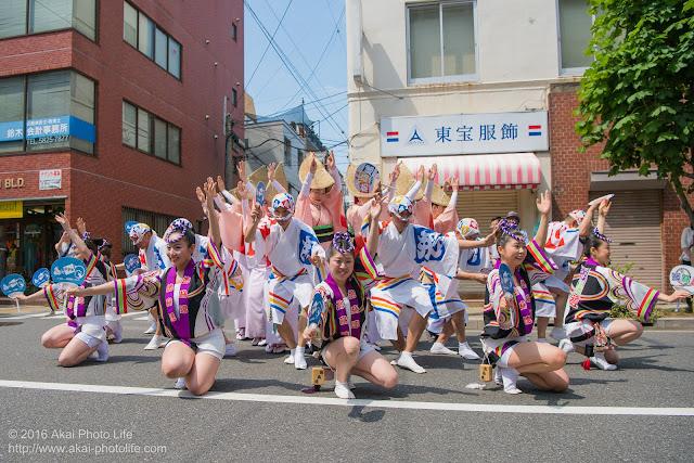 飛鳥連、マロニエ祭り、福井通りの演舞の写真 その1