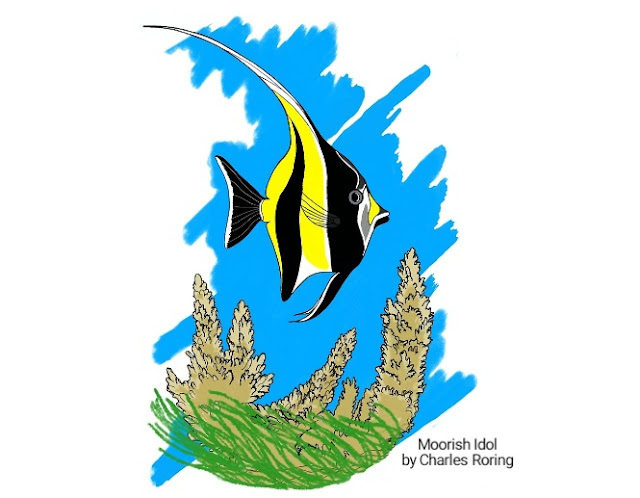 Reef fish art digital drawing