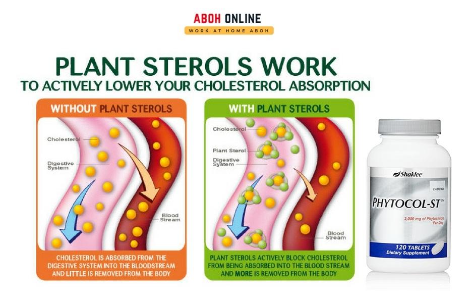cara atasi kolesterol