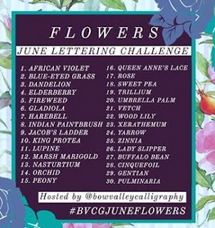 http://yogiemp.com/Calligraphy/Artwork/BVCG_LetteringChallenge_June2020/BVCG_LetteringChallenge_June2020.html