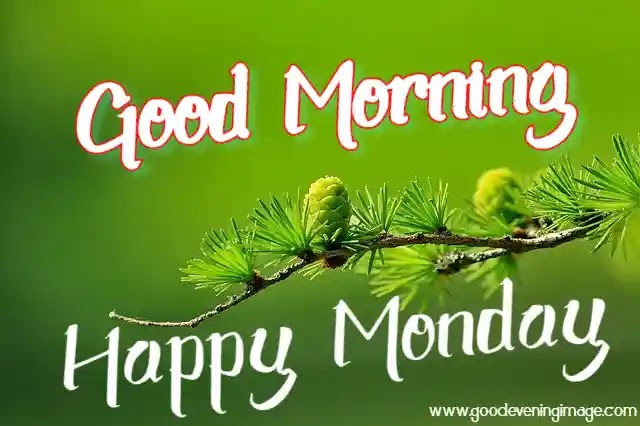 Good Morning Happy Monday Images, Photos