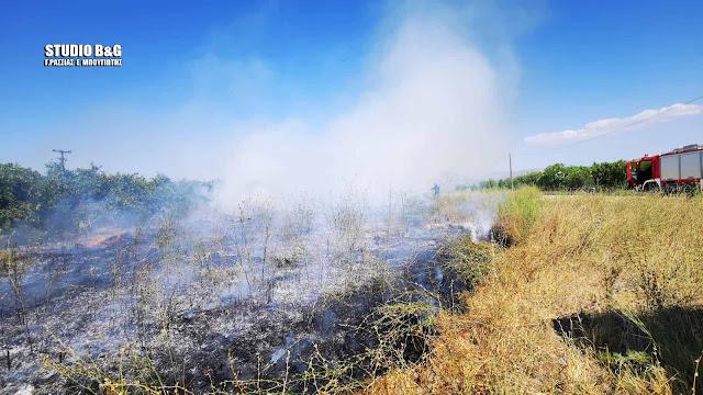 Πυρκαγιά σε αγροτική έκταση στο Νέο Ηραίο Αργολίδας