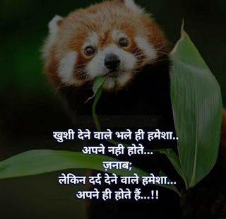 love status romantic best whatsapp image hindi,love status shayary