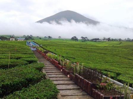 Obyek Wisata Gunung Dempo