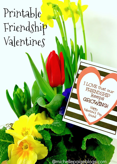 Our Friendship Grows Valentine @michellepaigeblogs.com