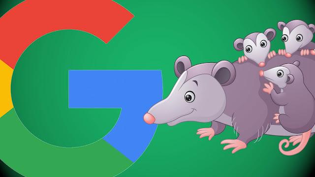 google posum
