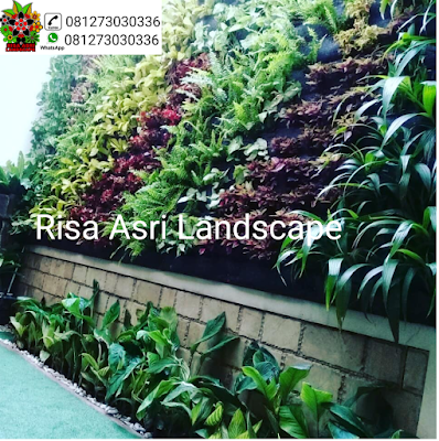 gambar taman vertikal, vertical garden, vertical green, taman vega, taman dinding, kantong
