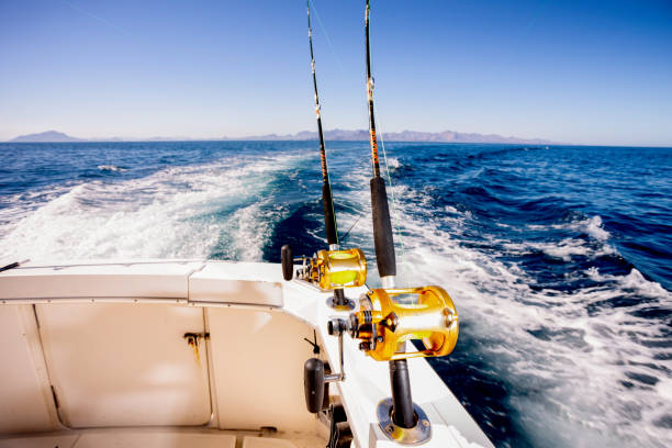 Saltwater Fishing – Requirements for Doing It