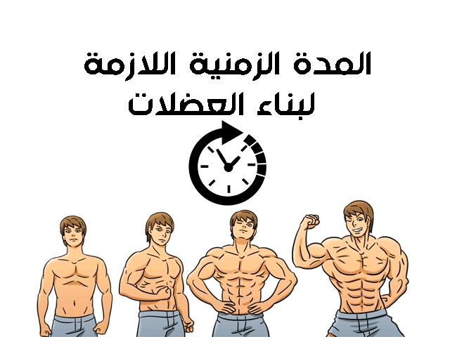 المدة الزمنية اللازمة لبناء العضلات