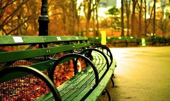 puisi-antara-taman-dan-kota