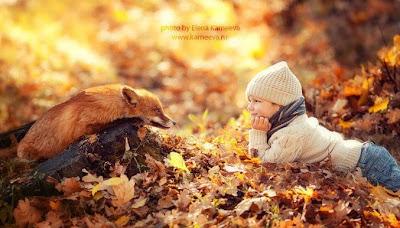 Zorrro y niña en el bosque