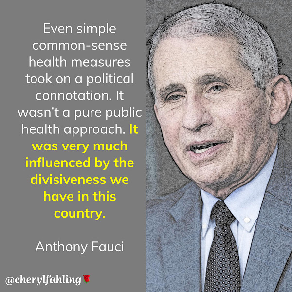 Even simple common-sense health measures took on a political connotation. It wasn't a pure public health approach. It was very much influenced by the divisiveness we have in this country. — Dr. Anthony Fauci, director of the National Institute of Allergy and Infectious Diseases and chief medical advisor to the president