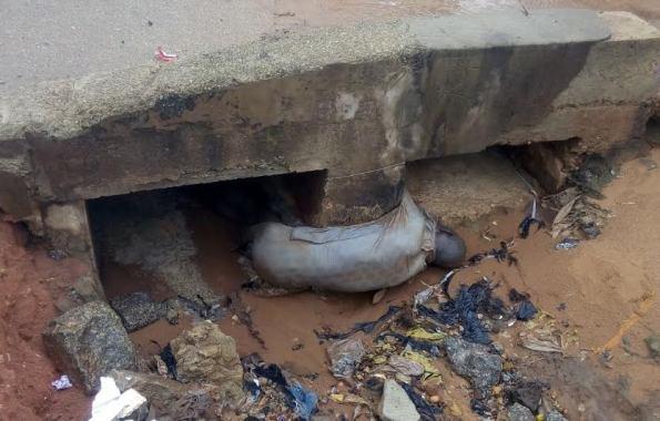 man died niger bridge
