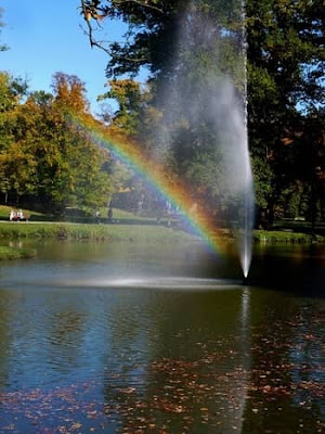 Rainbow formation due to water droplets