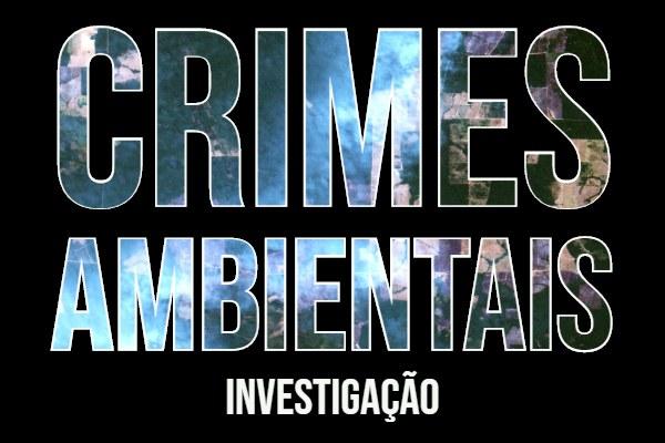Ministério Público abre investigação de crime ambiental em Monte Alegre