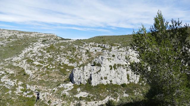 Le vallon des Piches (photo par Axel)