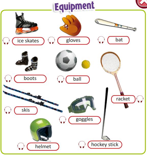 elc d senior vocabulary sports equipment injuries. Black Bedroom Furniture Sets. Home Design Ideas
