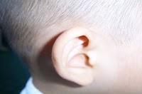 الأذن و حاسة السمع