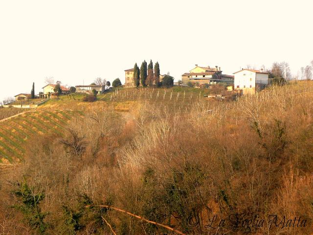 colline intorno ad Arfanta