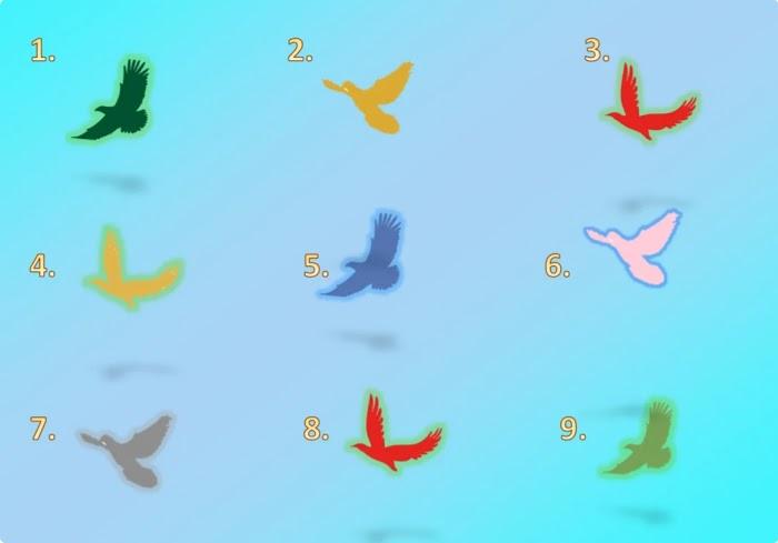 Выберите любую птицу, и Узнайте какой Вестью она вас Порадует
