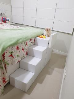 escadas para cães com distúrbios neurológicos