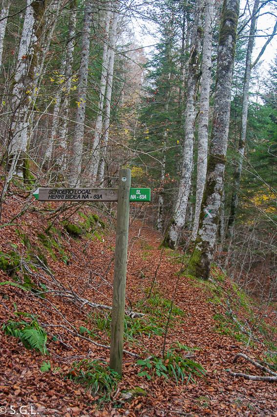 Sendero 63A- Bosque de Zabaleta. La selva de Irati