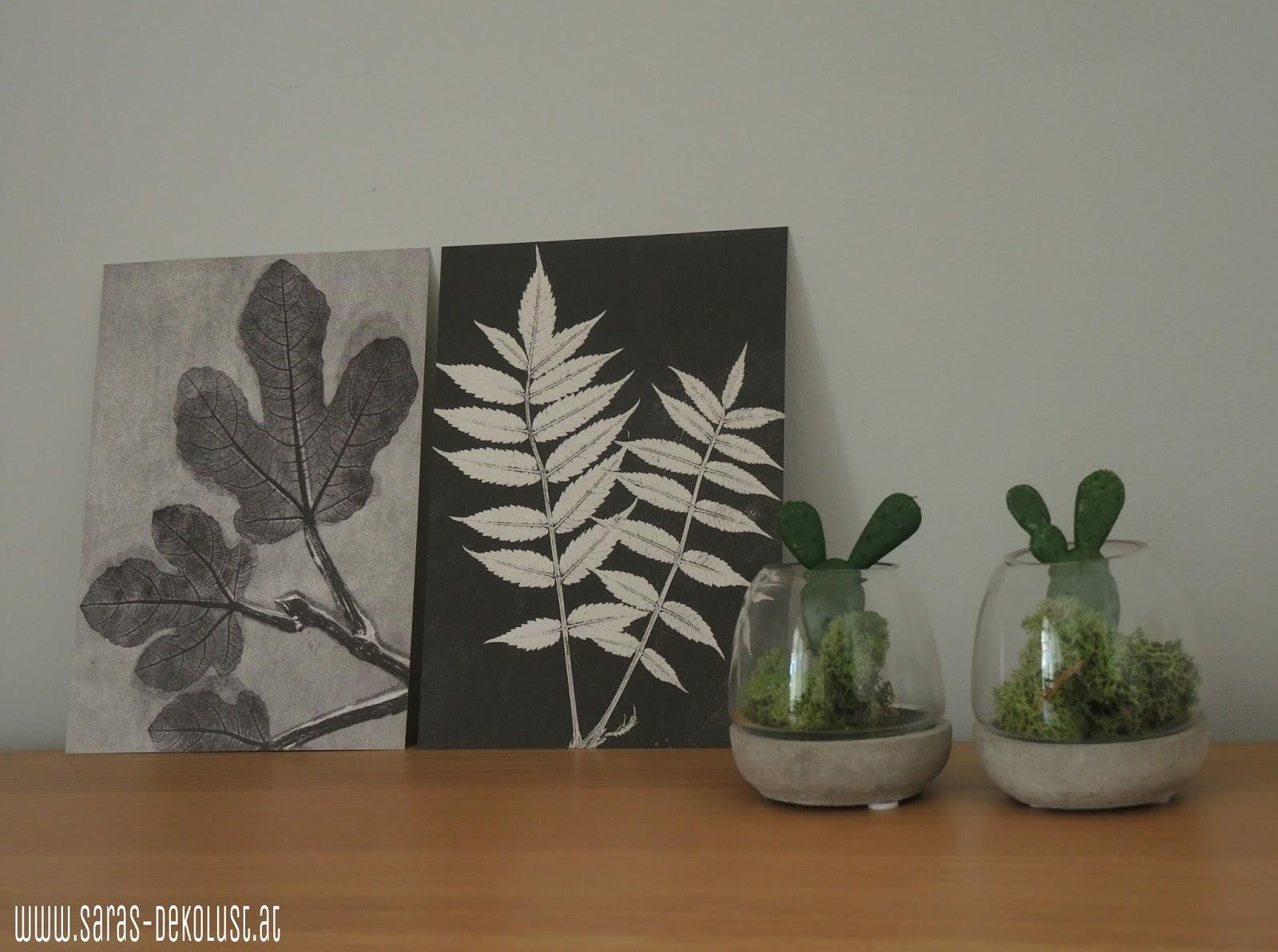 saras dekolust pflanze im glas. Black Bedroom Furniture Sets. Home Design Ideas