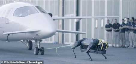 Moment Robot Dog Pulls A 3-ton Aeroplane Across More Than 30 Feet (Photos)