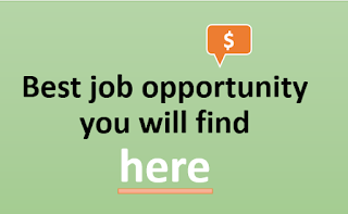 Best job opportunity you will find here