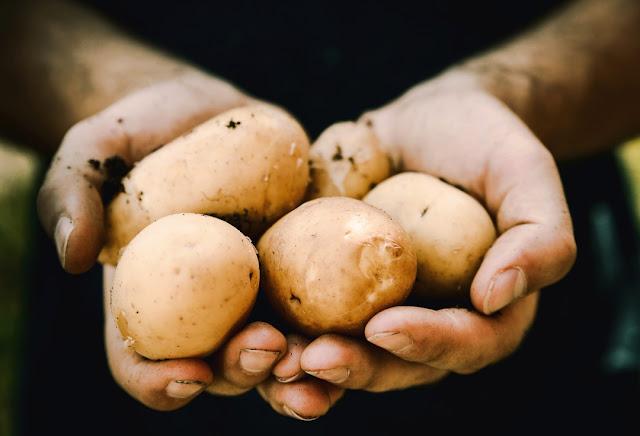 Kartoffeln für Pommes frites.