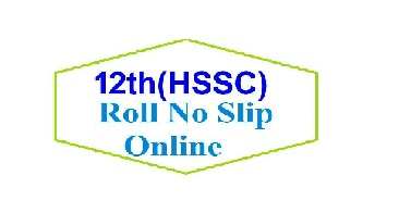 HSSC - II 12th Class Annual Examination 2021 Roll No Slip Download