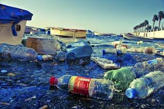 Pencemaran Laut: Penyebab, Dampak dan Cara Penanggulangannya