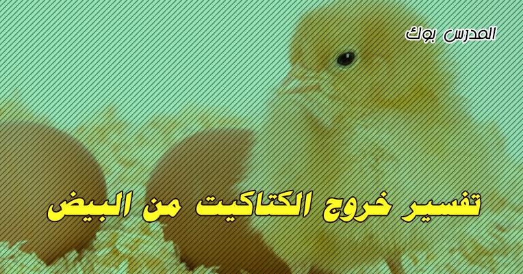 تفسير حلم خروج الكتاكيت من البيض