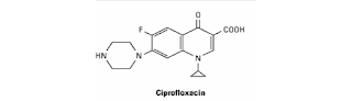 menghambat relaksasi superkoloid DNA dan memicu kerusakan untai ganda DNA Siprofloksasin
