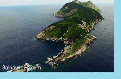 """اخطر جزر فى العالم """"جزيرة الثعابين """" ب البرازيل """"جزيرة الموت """""""
