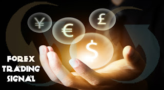 Forex Trading Is Hub For Huge Money by Forex Signal Company