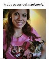loca de los gatos foto de humor