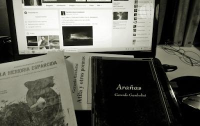 Gerardo Gambolini: Libros recibidos