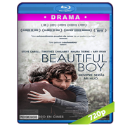 Beautiful Boy: Siempre serás mi hijo (2018) BRRip 720p Audio Dual Latino-Ingles