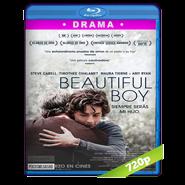 Beautiful Boy: Siempre serás mi hijo (2018) BRRip 720p Audio Dual Latino-Ingles