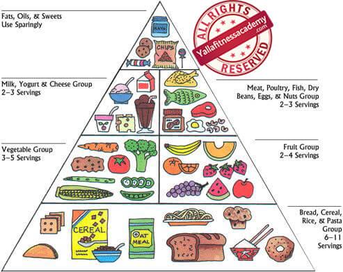 طرق تخطيط النظم الغذائية ( FGP )