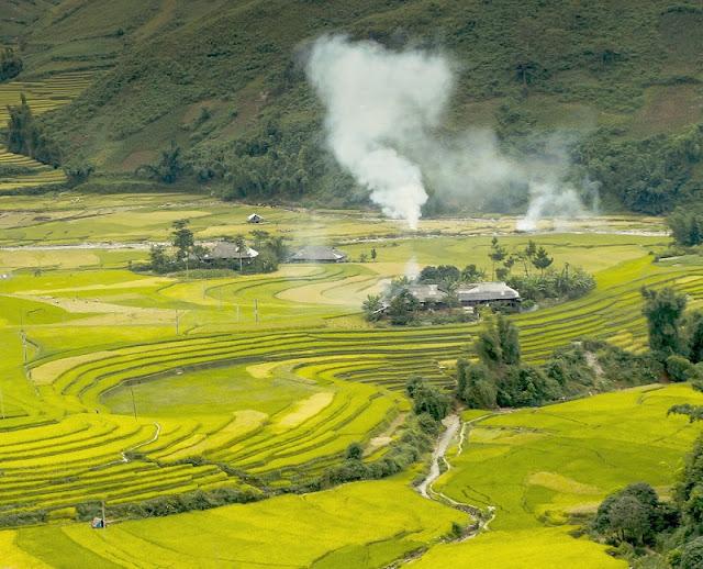 September - rice season is ripe - picturesque Northwest scenery 3