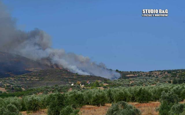 Πυρκαγιά στο Αγιονόρι Κορινθίας - Ορατός ο καπνός από την Αργολίδα