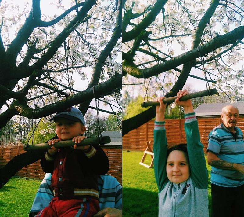 wiosna, dzieci, drzewo czereśni, huśtawka na drzewie