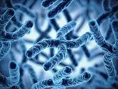 Basics to Genetics