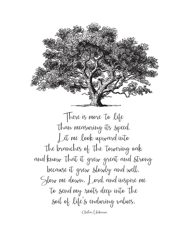 https://1.bp.blogspot.com/-aDh0sBGqYSE/V210bLLScWI/AAAAAAAAKkY/7lxh3gGYK1kmq7jxJsKY_Jkw_z1eJ_BGwCLcB/s1600/Slow-Down-Oak-Tree-Poem-sm.jpg