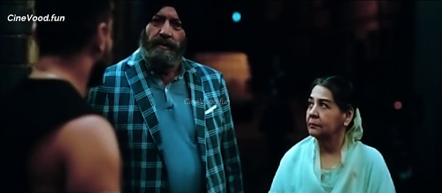 Jawaani Jaaneman (2020) Movie Download Hindi 720p HDCAMRip || Movies Counter 5