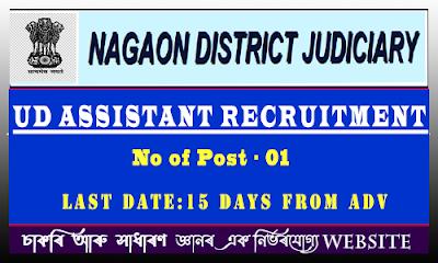 Nagaon Judiciary Recruitment 2021 - UDA