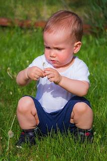 Kind betrachtet Blume auf einer Wiese