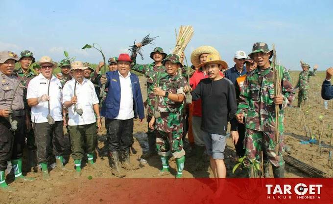 Kompak, Bupati dan Wabup Ikut Tanam Mangrove di Pantai Kertomulyo